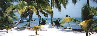 White sand beach on Ambergris Caye, Belize.