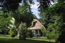 Wake up to the sounds of the jungle at Chaa Creek Cottages, Belize