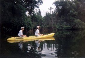 Jungle River Canoeing and Kayaking Adventure while staying at Hamanasi Lodge, Dangriga, Belize!
