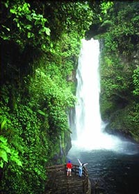 As you wander the trails of La Paz Waterfall Gardens your senses will delight at the five waterfalls that line the trail.